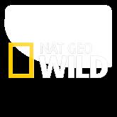 Смотреть онлайн nat geo wild