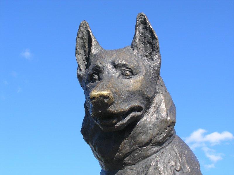 Памятник Преданности Тольятти