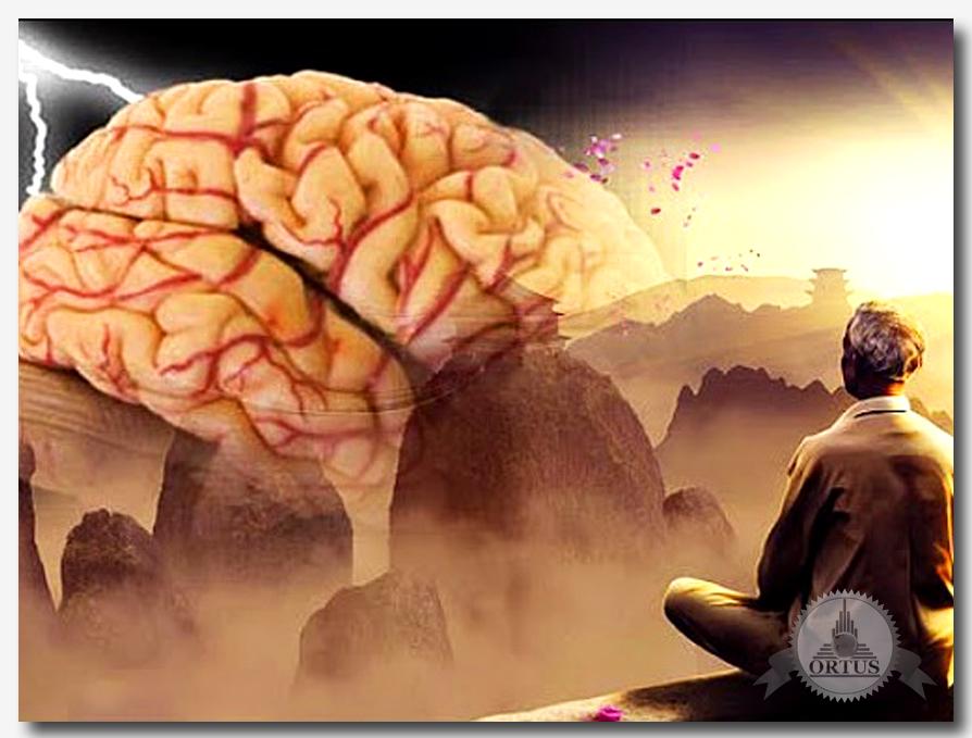 О том, как повысить интеллект рекомендует специалист по практической психологии, консультант информационного портала Ортус Глобал: https://ortus-global.com/blog/kak-povysit-intellekt