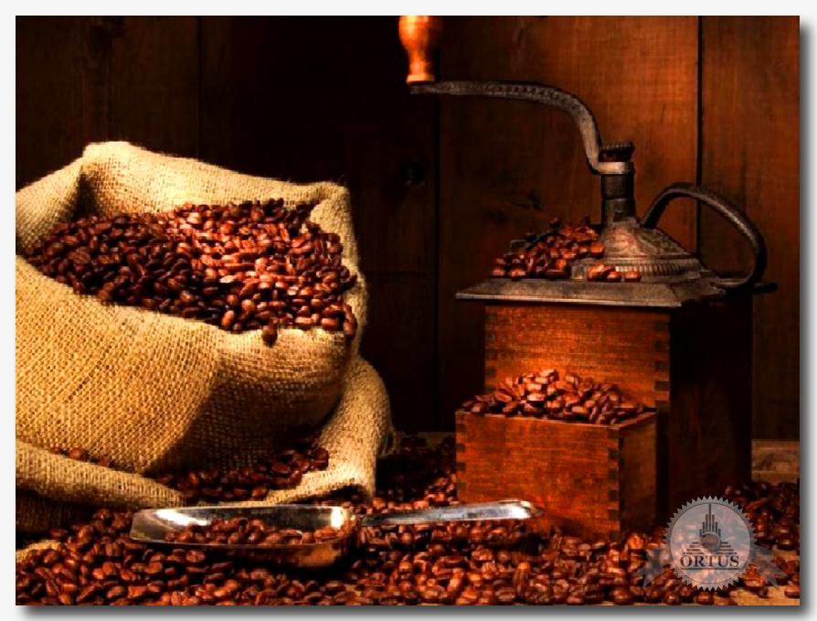 Какими особенностями обладает свежеобжаренный кофе – о полезных свойствах рассказывает специалист - консультант информационного торгового портала Ортус Глобал: https://ortus-global.com/blog/kakimi-osobennostyami-obladaet-svezheobzharennyy-kofe