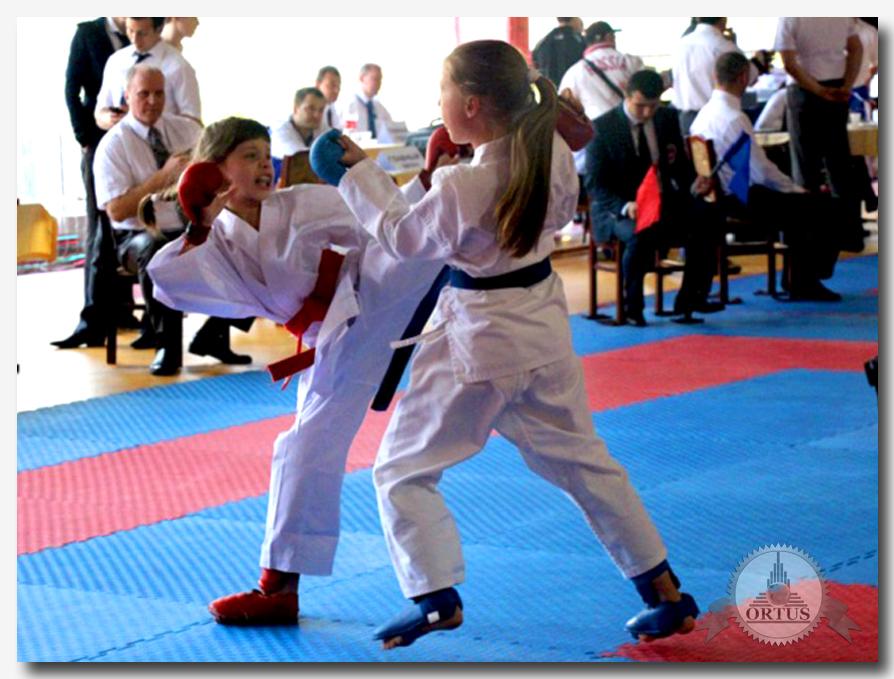О критериях выбора клуба и преимуществах занятий карате  информирует международный портал: https://ortus-global.com/blog/preimushchestva-zanyatiy-karate-i-kriterii-vybora-kluba
